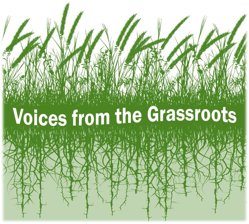 Logo for Voices from the Grassroots